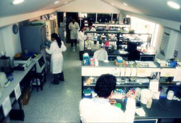 Produce y ofrece diversos reactivos para diagnósticos moleculares