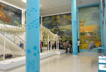 El Museo de Ciencias Naturales de La Salle fue reconocido por tres años por Colciencias como Centro de Ciencia