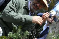 Con éxito finaliza expedición botánica de Boyacá Bio y Kew Gardens. Foto Colciencias