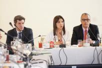 El plan de trabajo permitirá desarrollar la Misión con el propósito de recomendar las herramientas para el diseño e implementación de soluciones prácticas en materia de CTeI.