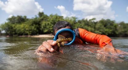 Colombia Bio expedición en Vichada