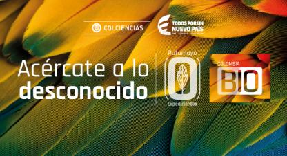 La Expedición Bio, la campaña de exploración en biodiversidad más grande de la historia de Colombia