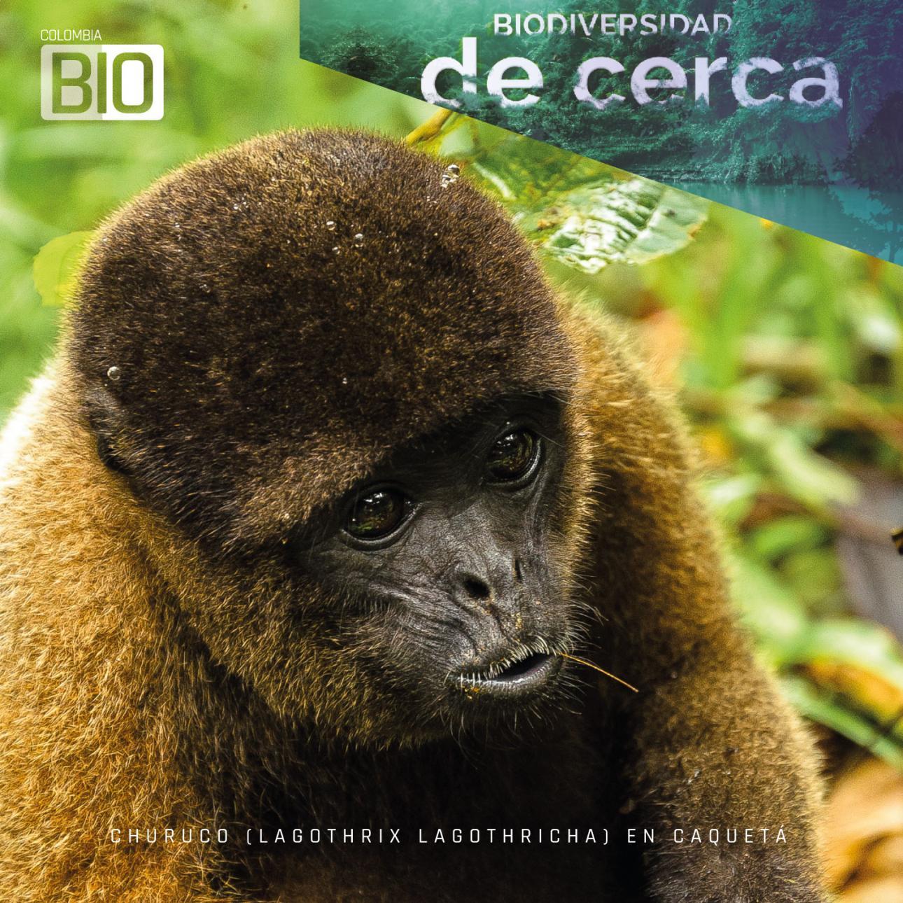 Colombia, el segundo país más biodiverso del mundo